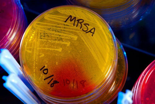 antibiotics-mrsa