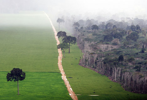 environment-emissions