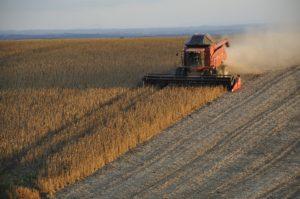 Grains Brazil Harvester Soybeans Harvest