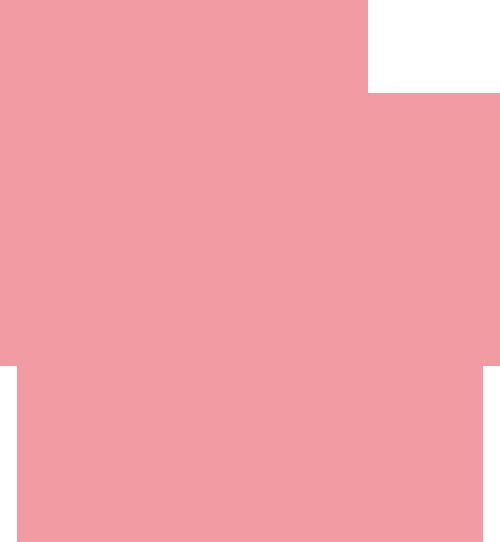 The Pig Pledge Pig