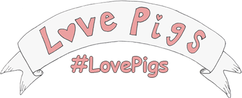 love-pigs-banner