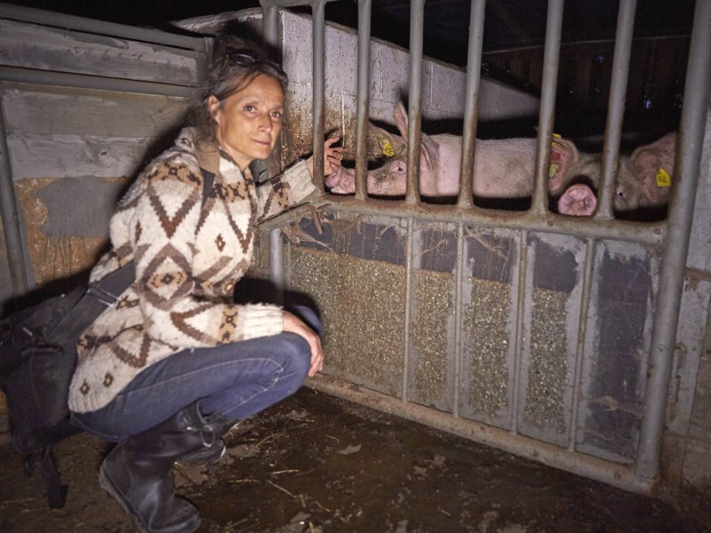 Tracy-with-Pigs